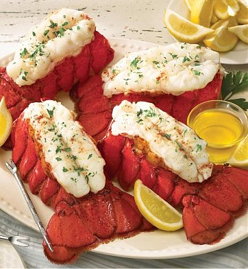 4 Maine Lobster Tails $84.95 Home Delivery